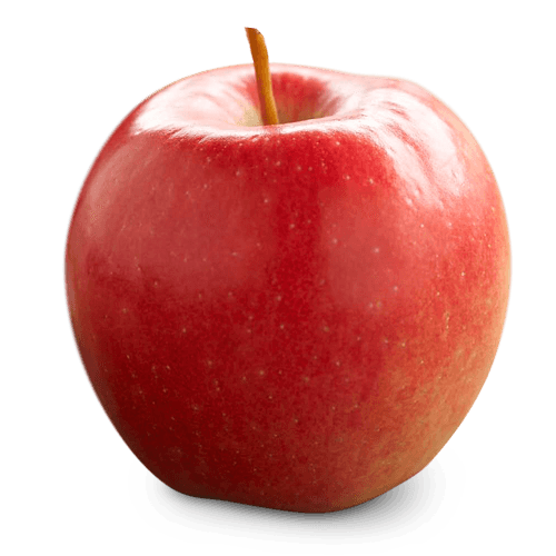 clip royalty free library Ontario Apple Growers