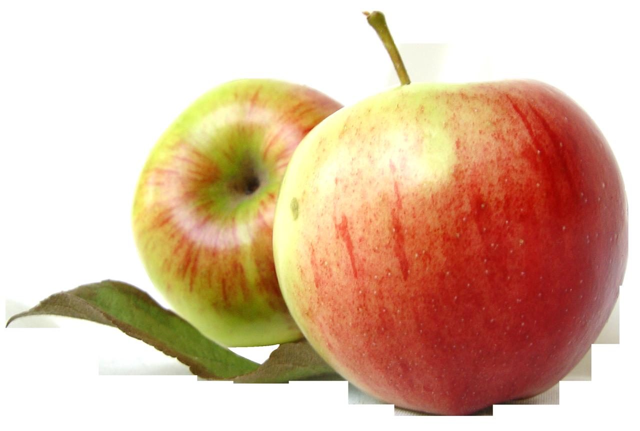 clip art freeuse Apple Fruit PNG Images Transparent Free Download