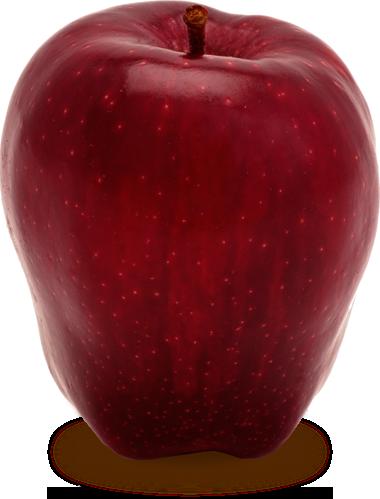 svg black and white Apple Specs
