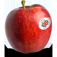 jpg library Great British Apples