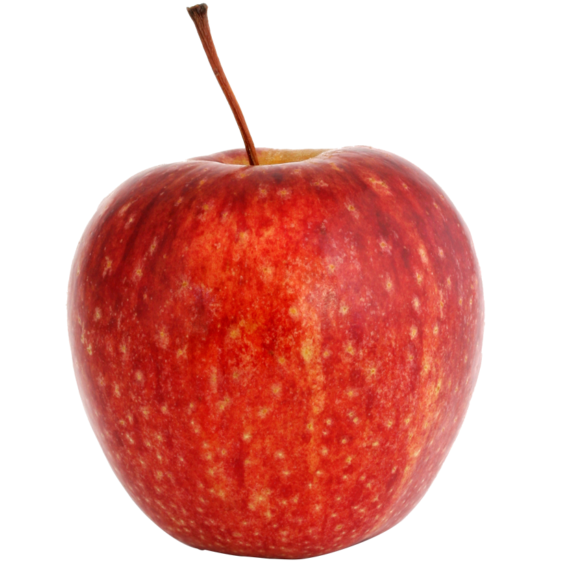 svg free download How to pick apples at the orchard