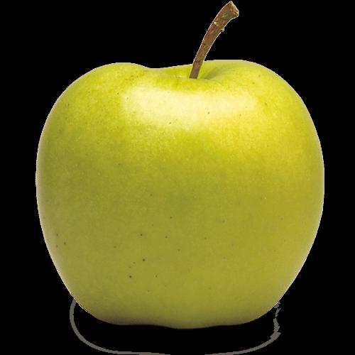 clip art library Ontario Apple Growers