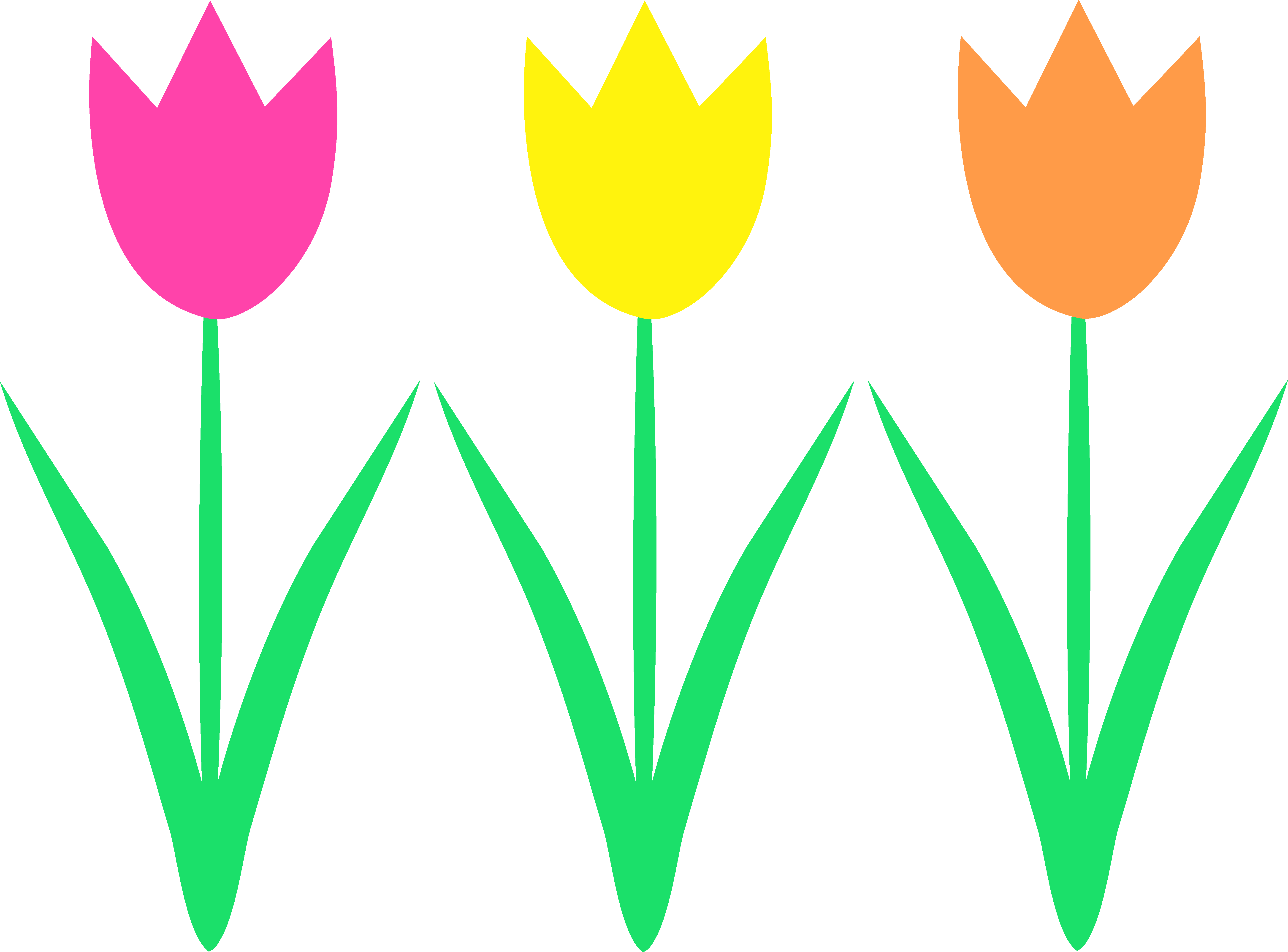 jpg transparent Tulip border clipart. Best collection of spring