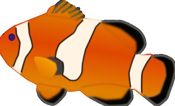 royalty free Aquarium clipart svg. Fish amphiprion percula clip.