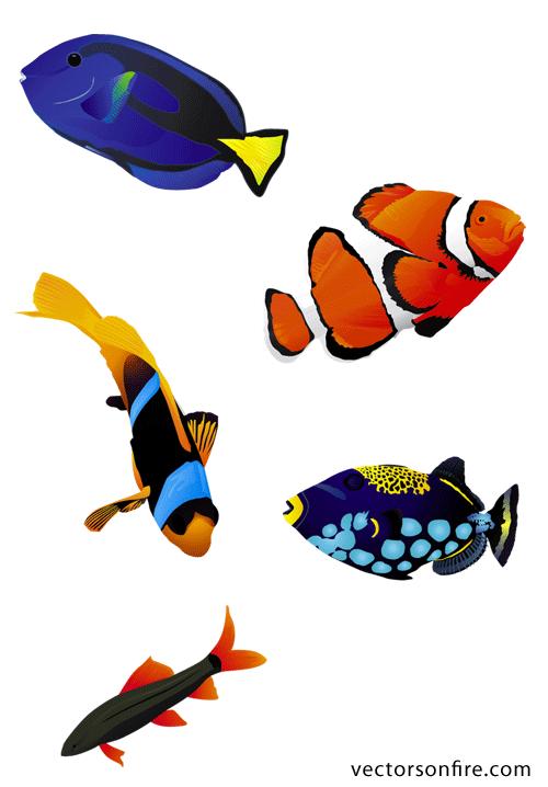 clipart stock Aquarium clipart vector. Free colorful fish psd.