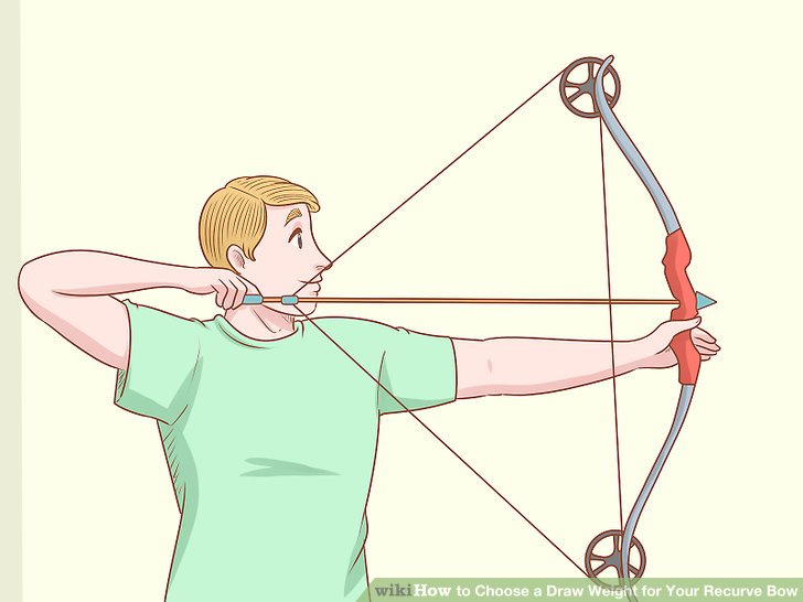 graphic royalty free download How to choose a. Archery drawing.