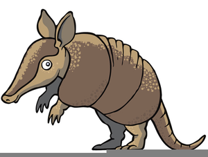 graphic freeuse download Armadillo clipart. Cartoon free images at