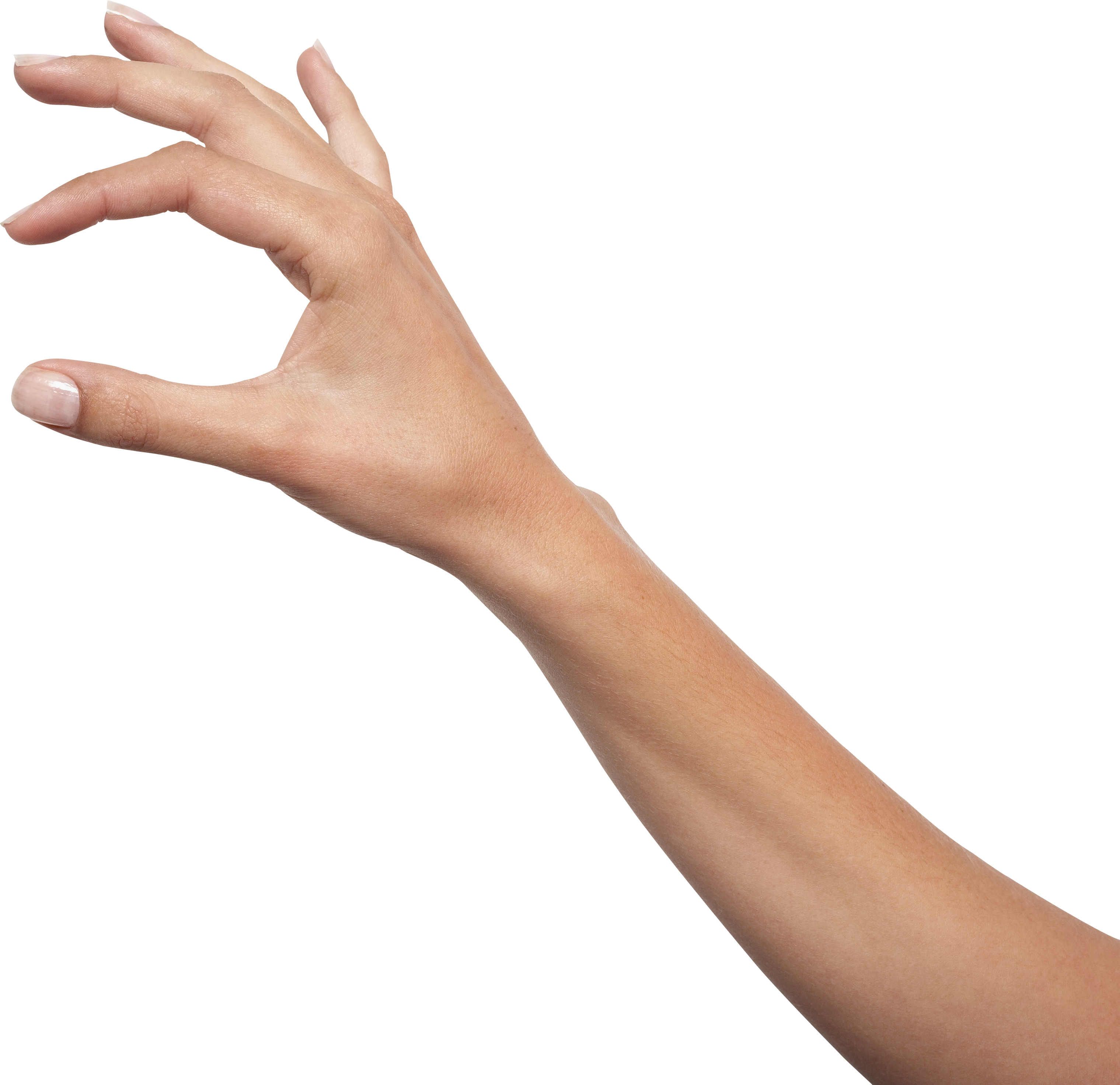 image black and white download Png free images pictures. Hands clipart forearm