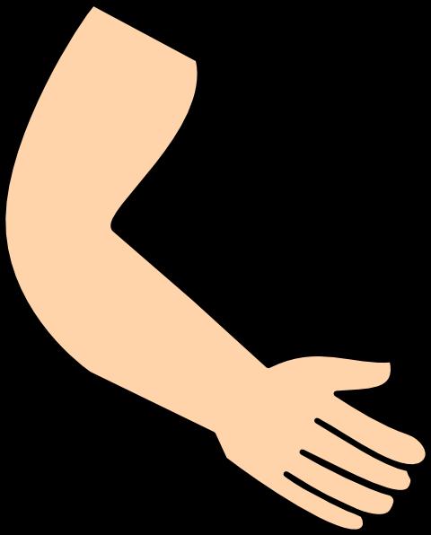 svg freeuse library Bra clipart 2 arm. Clip art cartoon arms