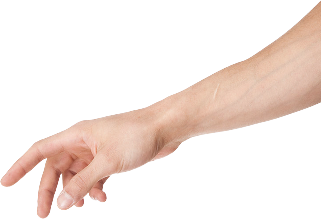 vector free download  png for free. Arms transparent