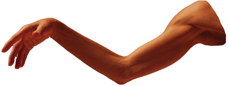 image freeuse library Arms transparent. Arm png images free