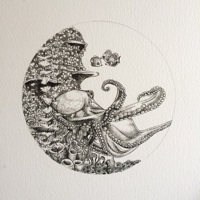 jpg royalty free library Drawing octopus coral reef. Recycling some old ideas