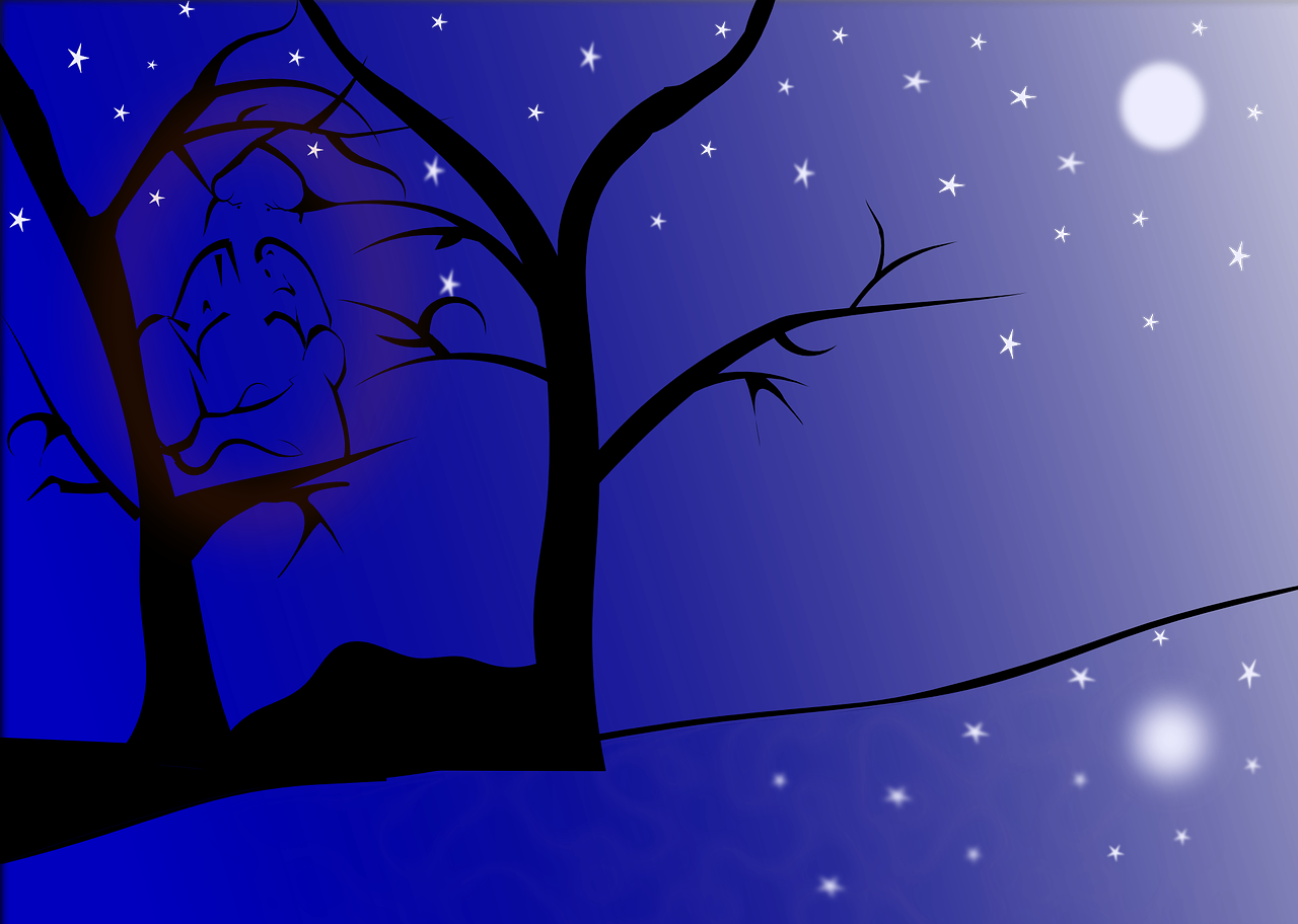 vector library How to draw night