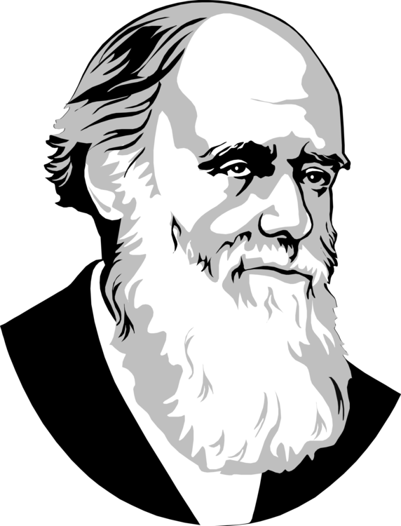 image black and white library Drawing Astronomer Scientist Philosopher Science free commercial