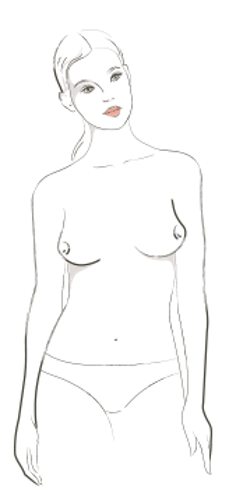 graphic library download Drawing neck chest. Apparently there are types
