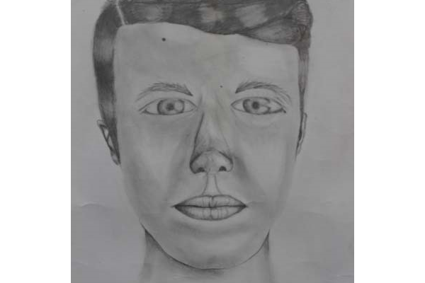 freeuse Covenant christian school belrose. Drawing portrait self