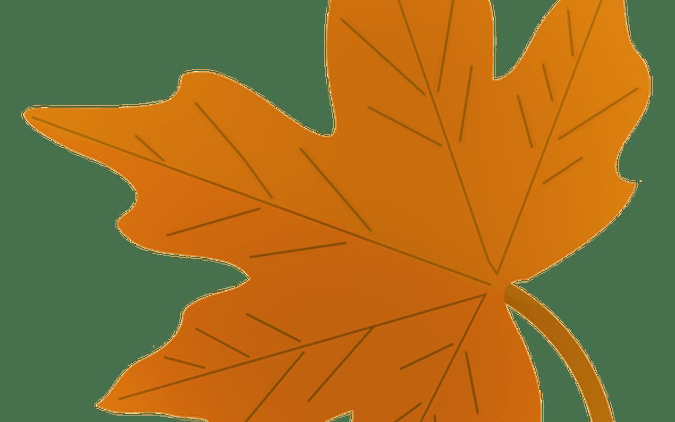 jpg free Fall leaves clip art. Autumn clipart.