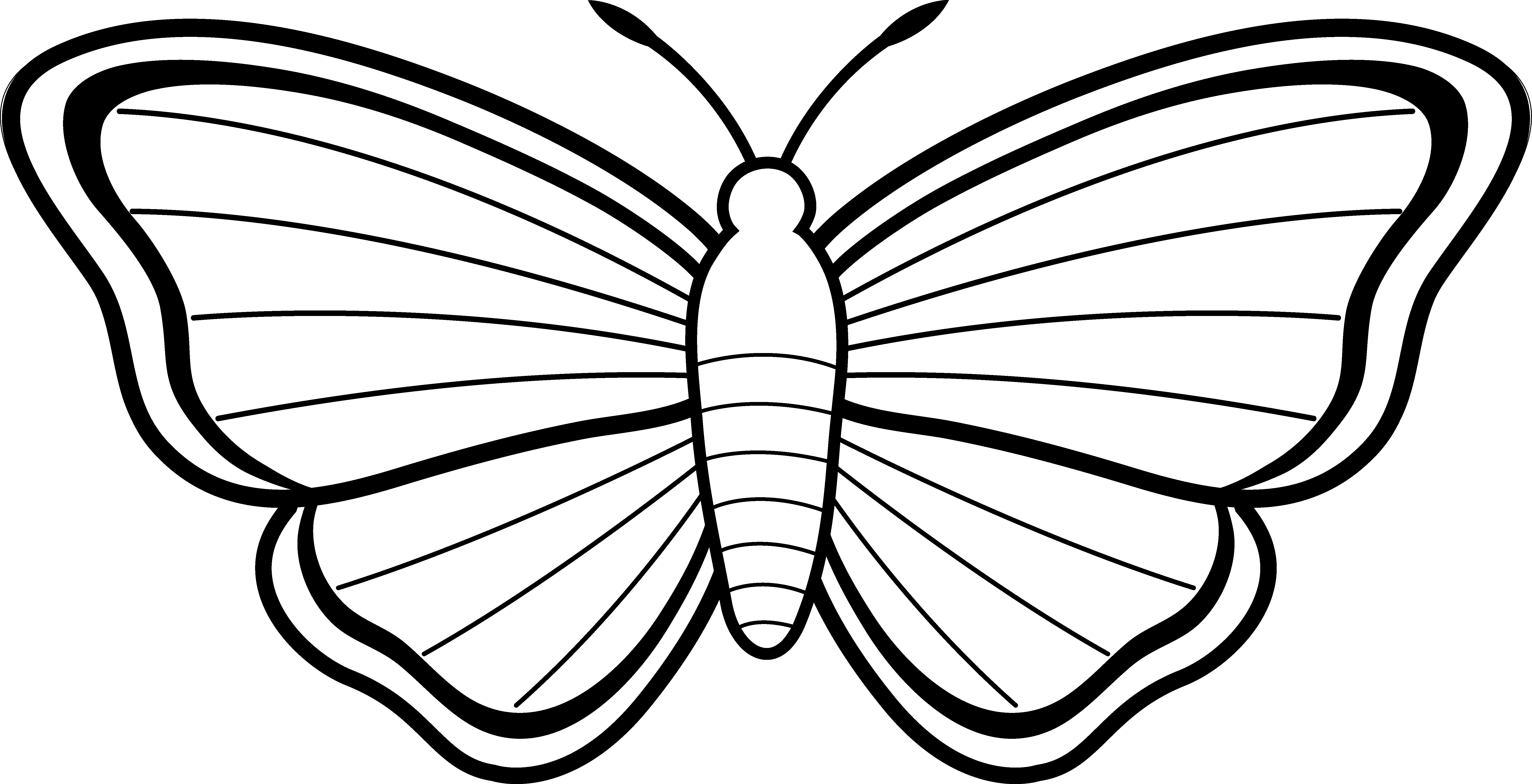 jpg freeuse stock Clipart Butterfly Outline