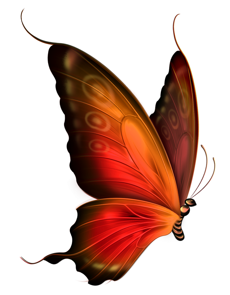 graphic library Red and brown transparent. Autumn clipart butterfly.