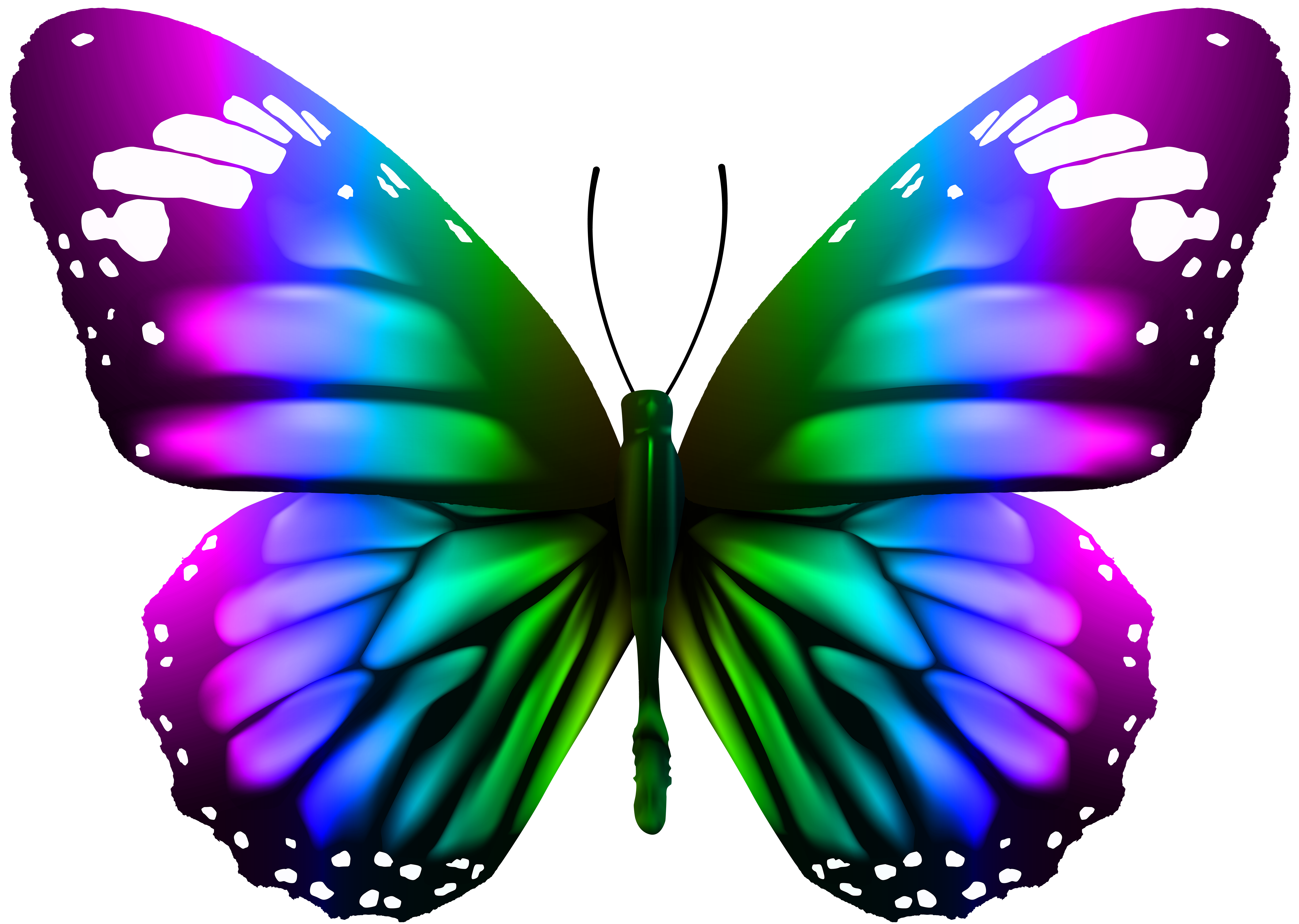 clip library Autumn clipart butterfly. Transparent clip art png.