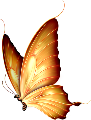 vector royalty free Gold png fj rillar. Autumn clipart butterfly.