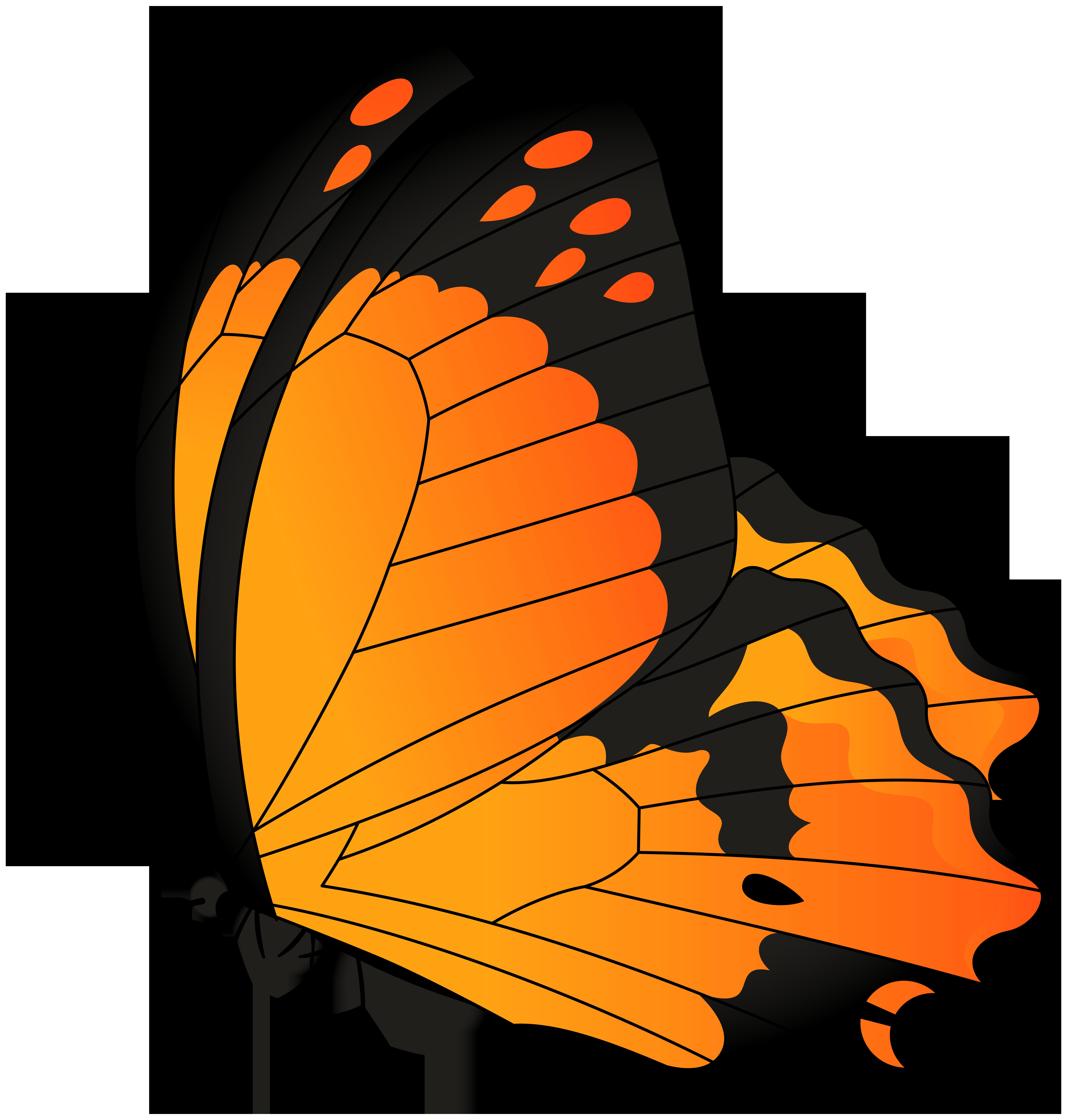 svg black and white Orange transparent clip art. Autumn clipart butterfly.