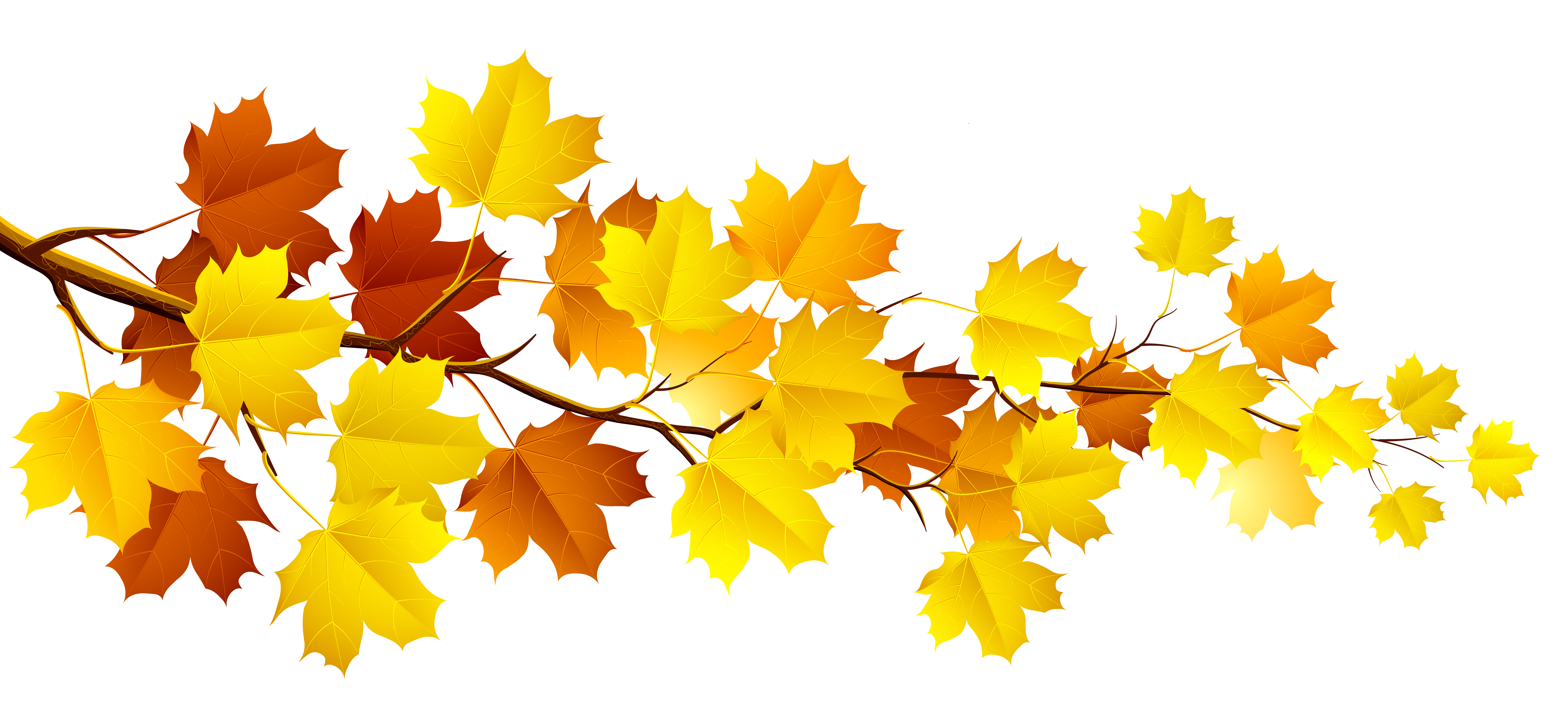 clip art stock Branch with Autumn Leaves PNG Clipart