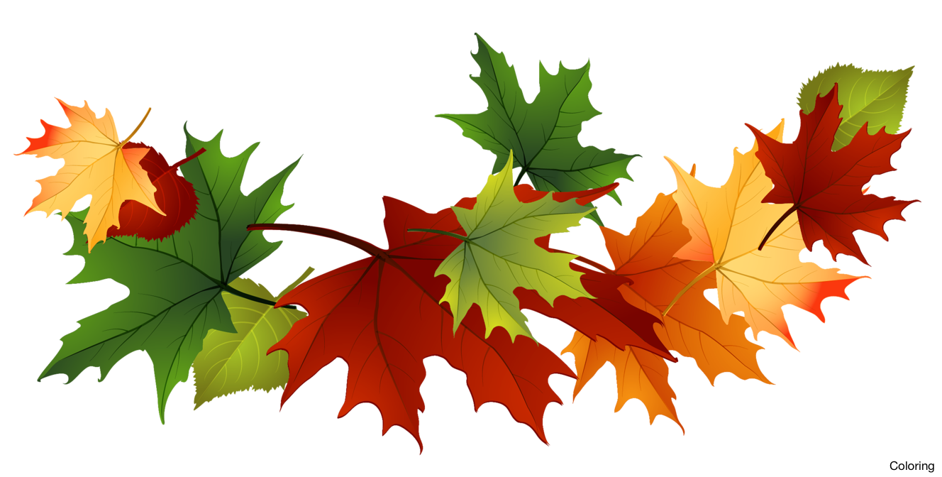 svg free stock Fall clipart. Majestic autumn leaves clip