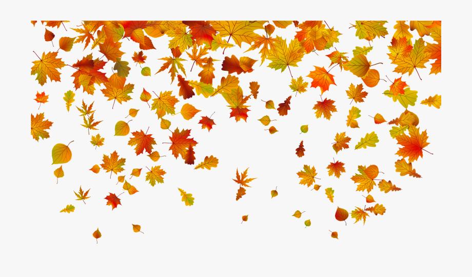 graphic freeuse Beautiful falling leaves . Fall leaf border clipart