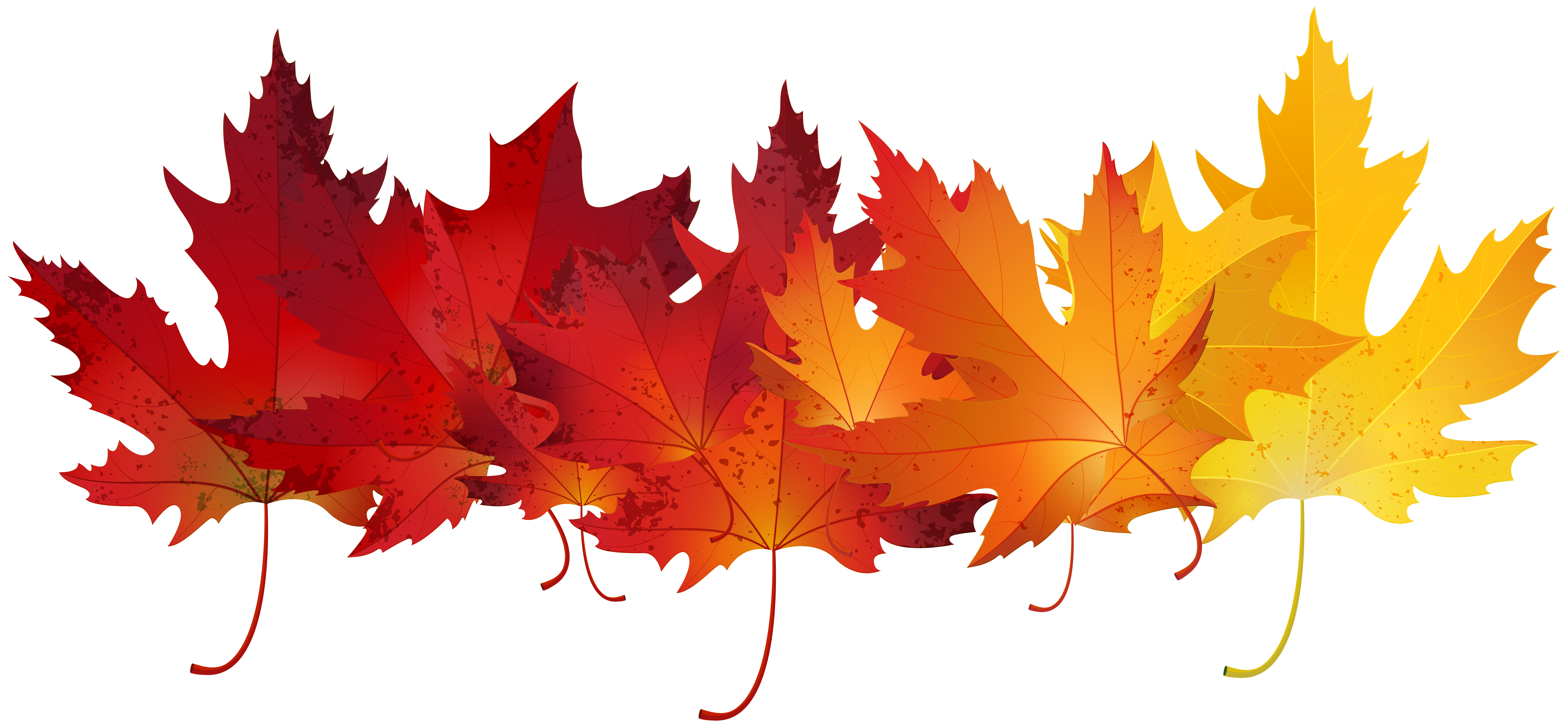 clip royalty free download Autumn clip art image. Fall transparent red leaves