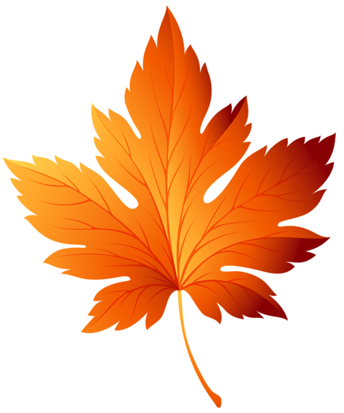 vector transparent Autumn Leaf Transparent PNG Clip Art Image