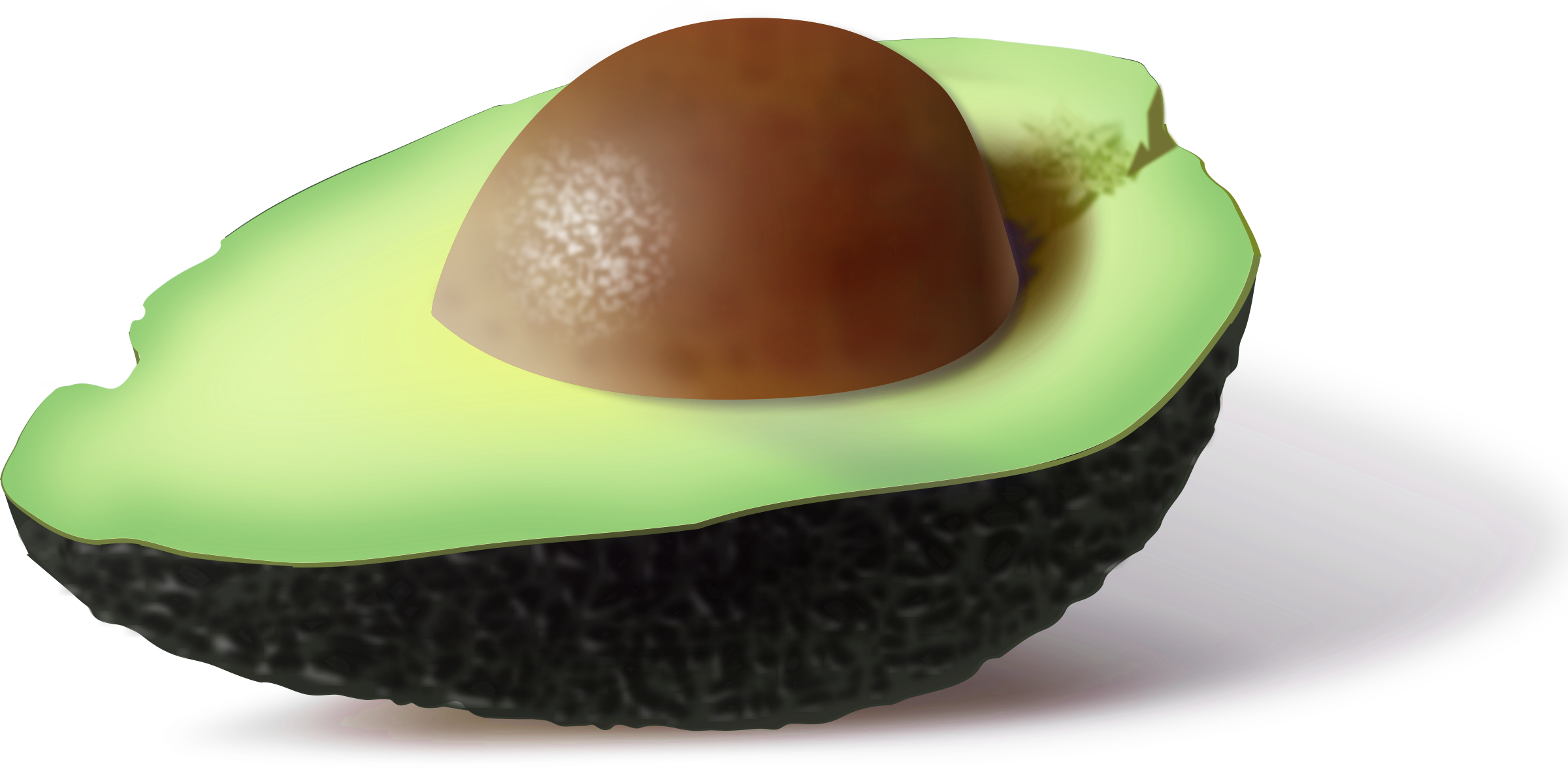 free . Avocado clipart