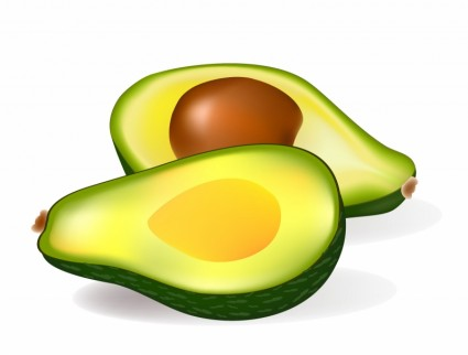 png freeuse stock Cliparts download clip art. Avocado clipart free