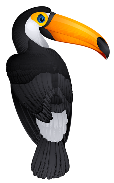 image library library Toucan clipart eagle. Bird png picture toucans