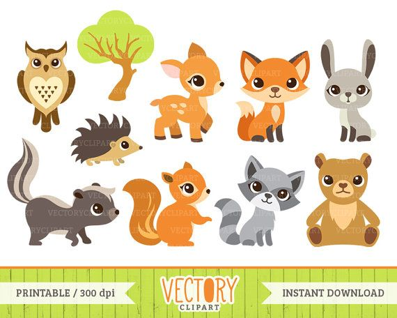 banner library stock  woodland clip art. Baby forest animal clipart