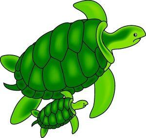 free Baby sea turtle clipart. Cute clip art turtles