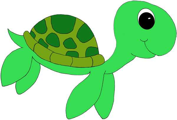 picture free stock Baby sea turtle clipart. Free cliparts download clip