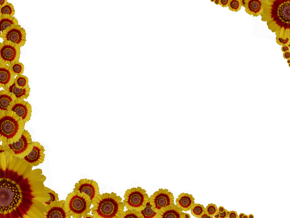 clipart library library Red yellow flowers sprinkled. Background clipart sprinkle.