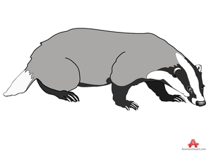 jpg royalty free stock Badger clipart. Clip art transparent free