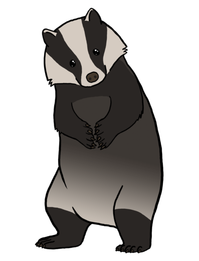 image transparent European Badger Does Care by soyrwoo on DeviantArt