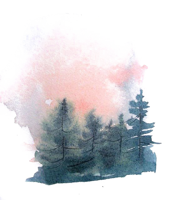 banner library stock Cheesecake drawing watercolor. Painting pine forest transprent
