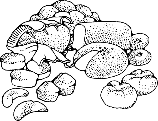 svg royalty free library Baked goods clip art. Baking drawing
