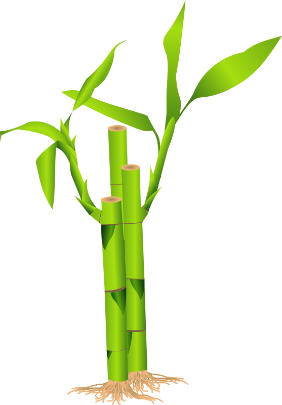image free library Bamboo transparent clip art. Clipart background free on