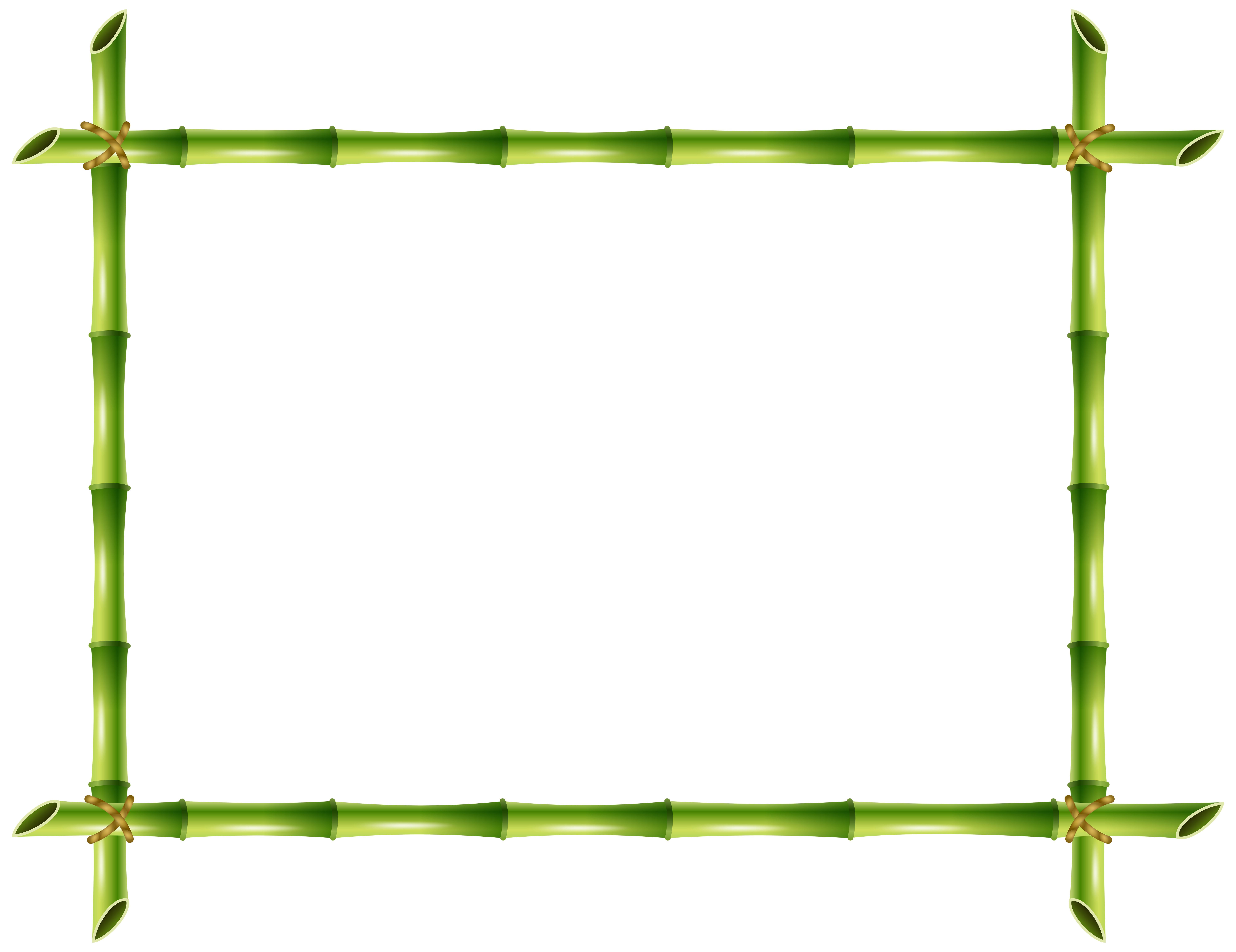 banner royalty free Frame png clip art. Bamboo transparent border
