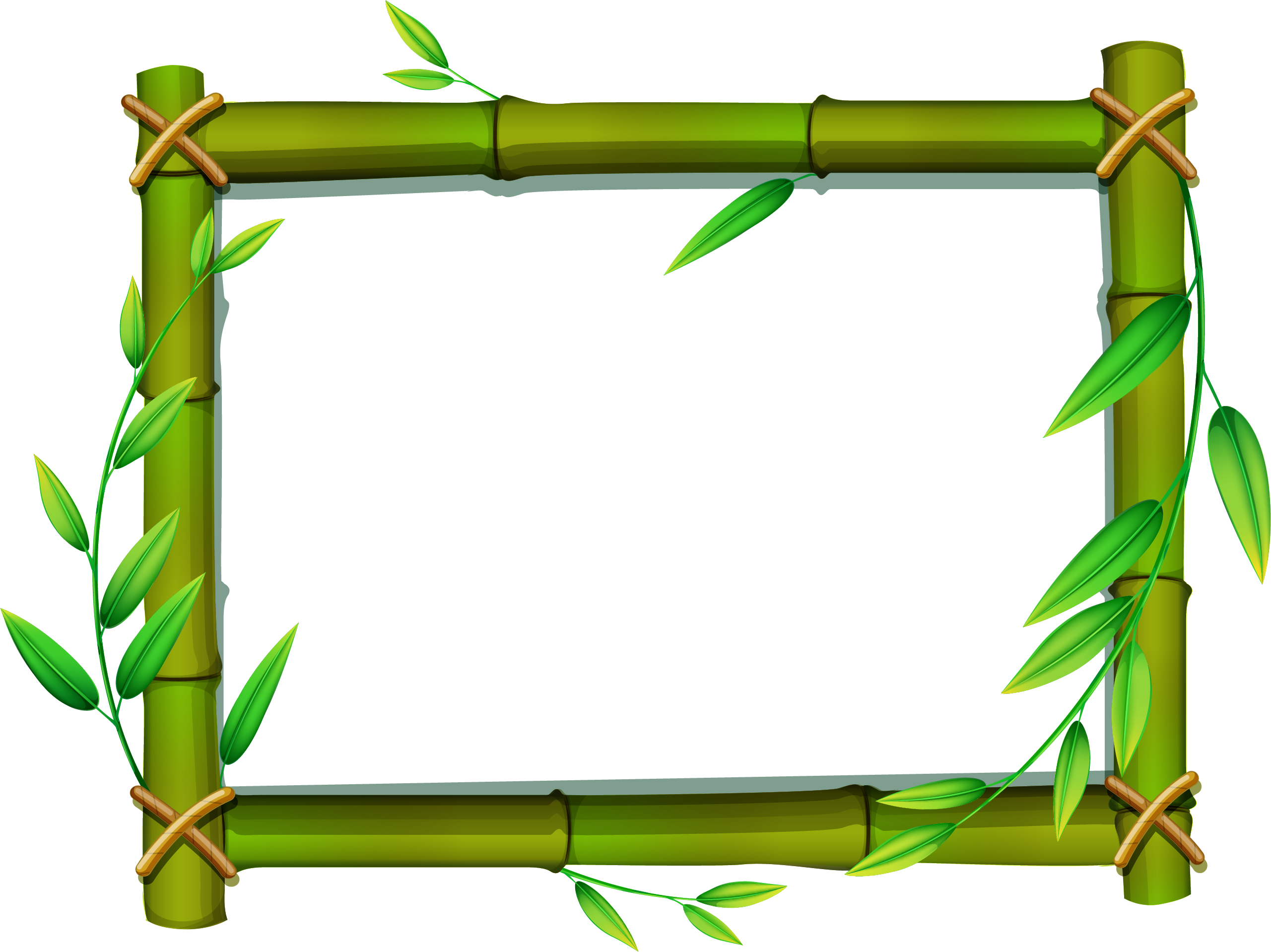 png royalty free download Png free images only. Bamboo transparent frame borders