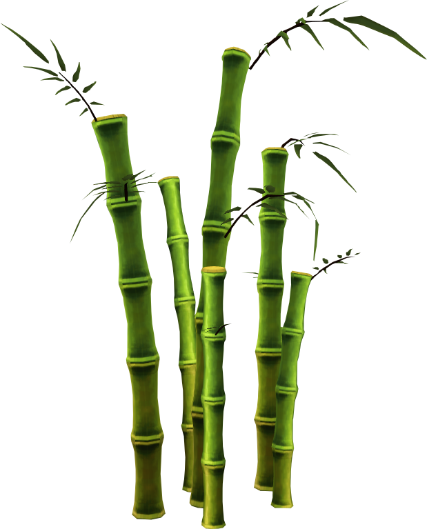 clipart royalty free download Bamboo transparent single.  collection of tree