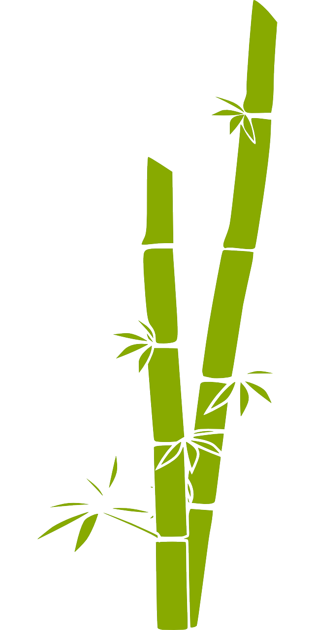 graphic library library Fake plants hq. Bamboo transparent animated