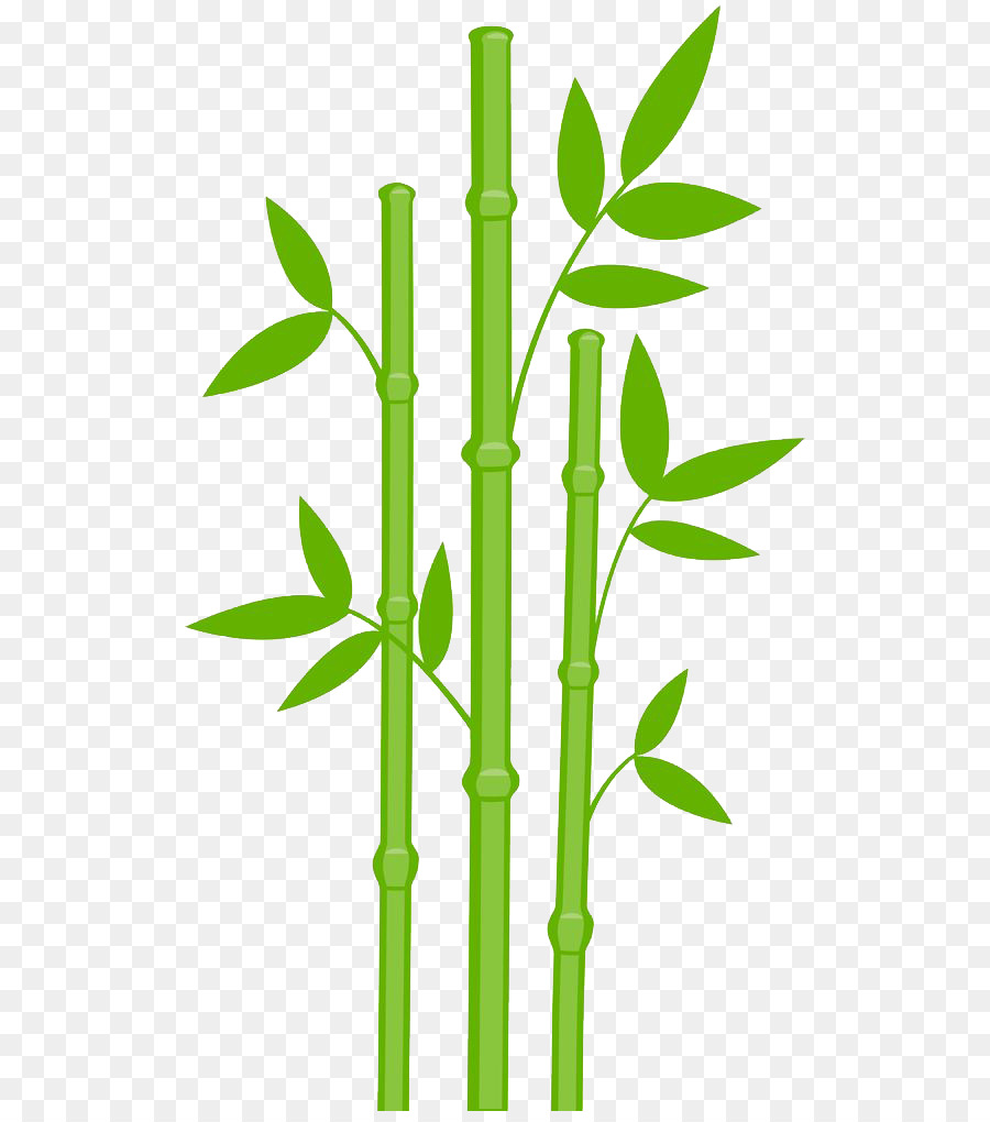 picture freeuse Bamboo transparent clip art. Family tree background clipart