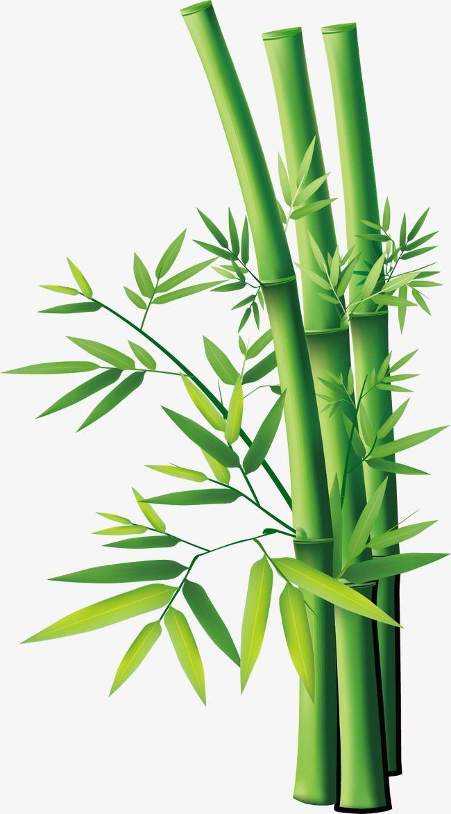 svg transparent download Bamboo transparent cute cartoon. Vector material png and