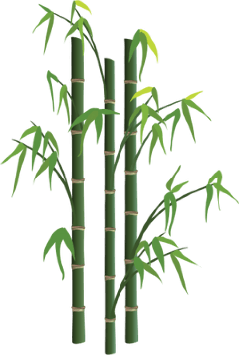 clip freeuse library Bamboo transparent file. Png free images toppng
